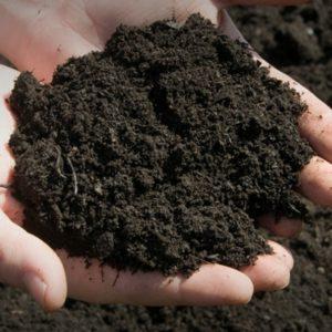 Buy Topsoil Online